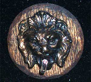 Small Animal Head